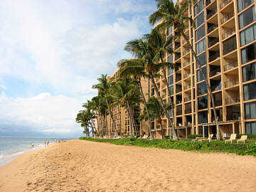 Beach at Mahana