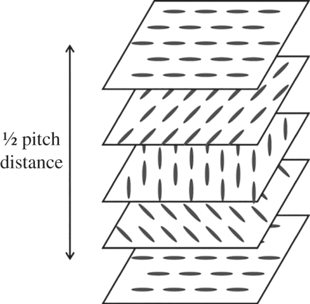 Variation In The Circularly Polarized Light Reflection Of