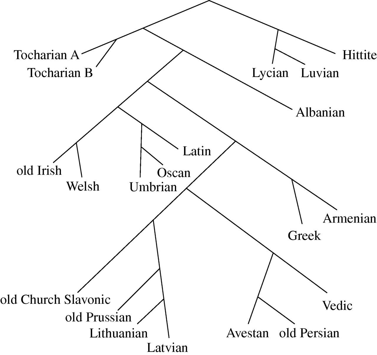 Splits or waves? Trees or webs? How divergence measures