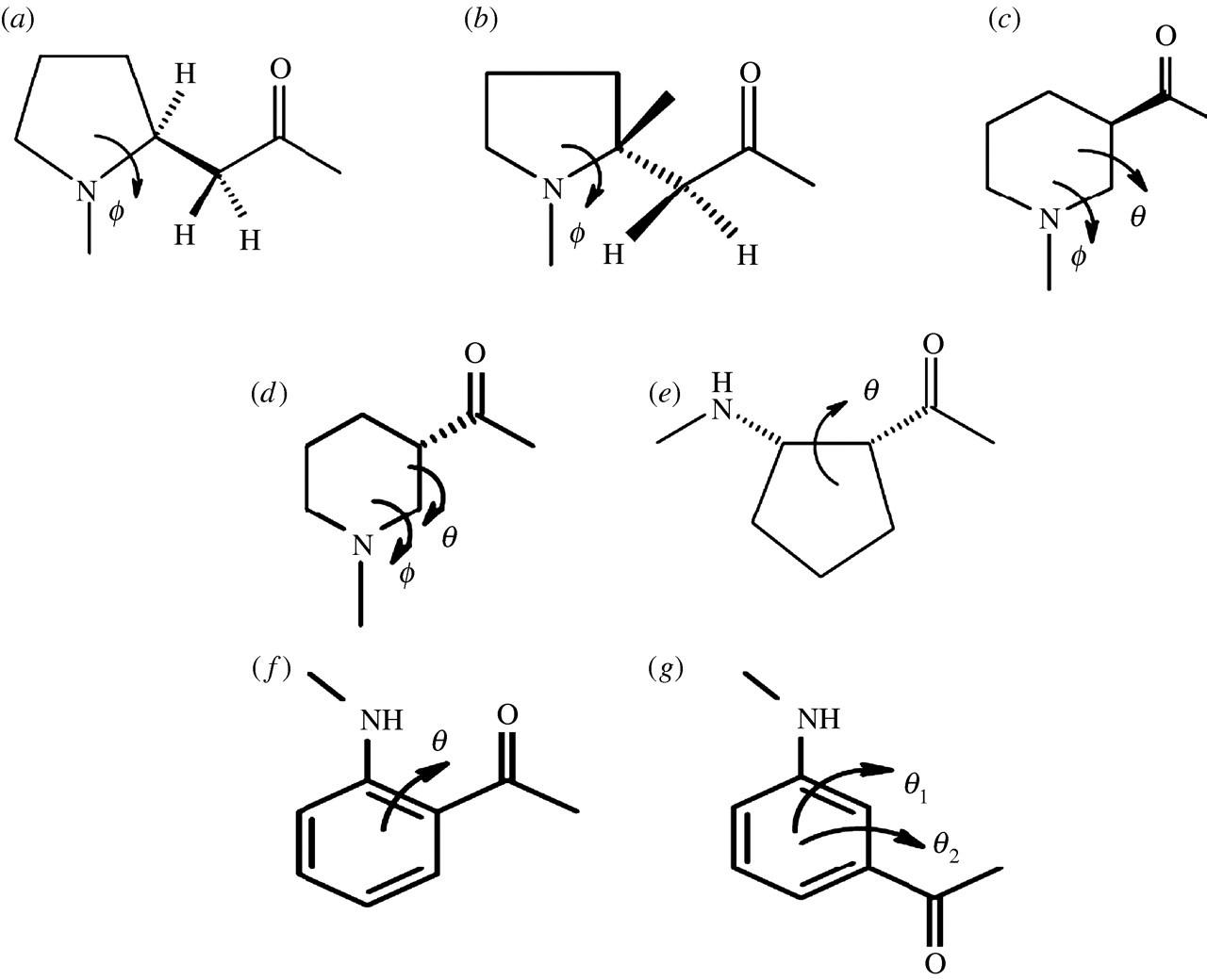 Expanding the polypeptide backbone: hydrogen-bonded
