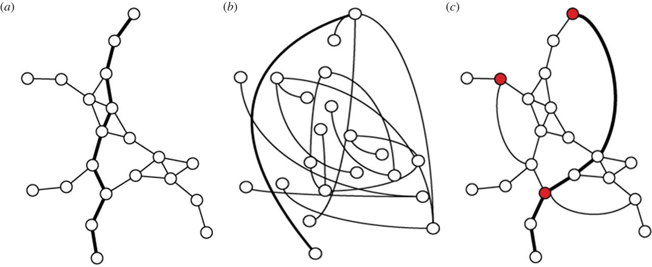 Testing complex networks of interaction at the onset of