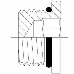 Hydraulic Fittings MORB Hollow Hex Plug 6408-H-O Series