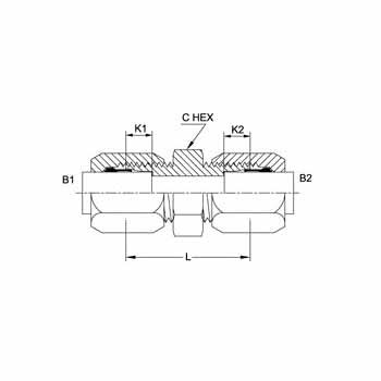 Hydraulic Fitting C2403-20-20-SS 20BT-20BT Tube Union