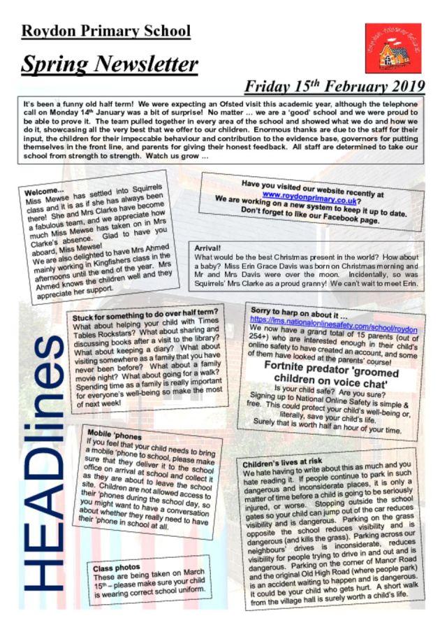 thumbnail of Newsletter Spr 1 19