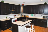 Custom Black Kitchen Cabinets | Roy Home Design