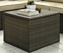 Trunk Coffee Table Target Furnitures Roy Home Design
