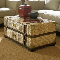 Trunk Coffee Table Target Furnitures | Roy Home Design