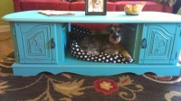 Coffee Table Dog Bed Ideas | Roy Home Design