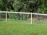 Dog Yard Fencing Options
