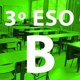 3º Eso B IES Las Rozas 1