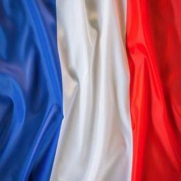 departamento Francés IES Las Rozas 1