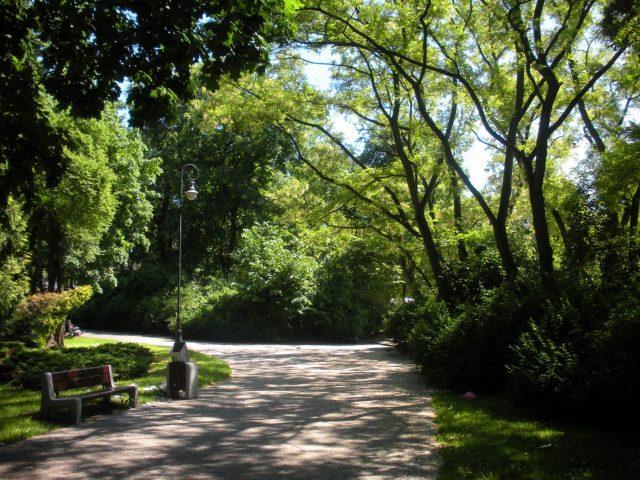 Park od strony ul. A. Mickiewicza