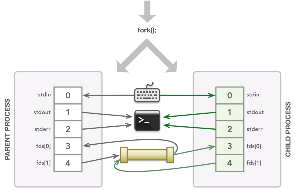 medium resolution of the fork call creates the child process which is a copy of the parent s memory and file descriptor table at that point in time