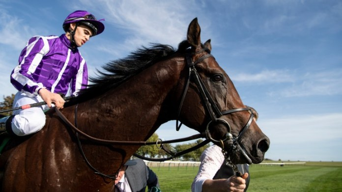 Ten Sovereigns: on course for the July Cup