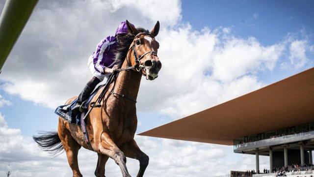 Almond Eye and Crystal Ocean feature in Cox Plate ...