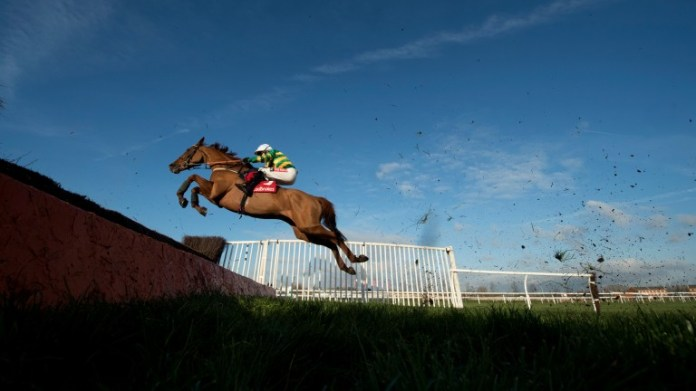 Yanworth in full flight over fences at Newbury in 2017