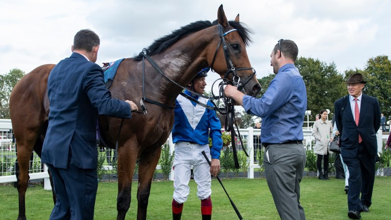 It S Dettori And Gosden Again As Lord North Reigns In