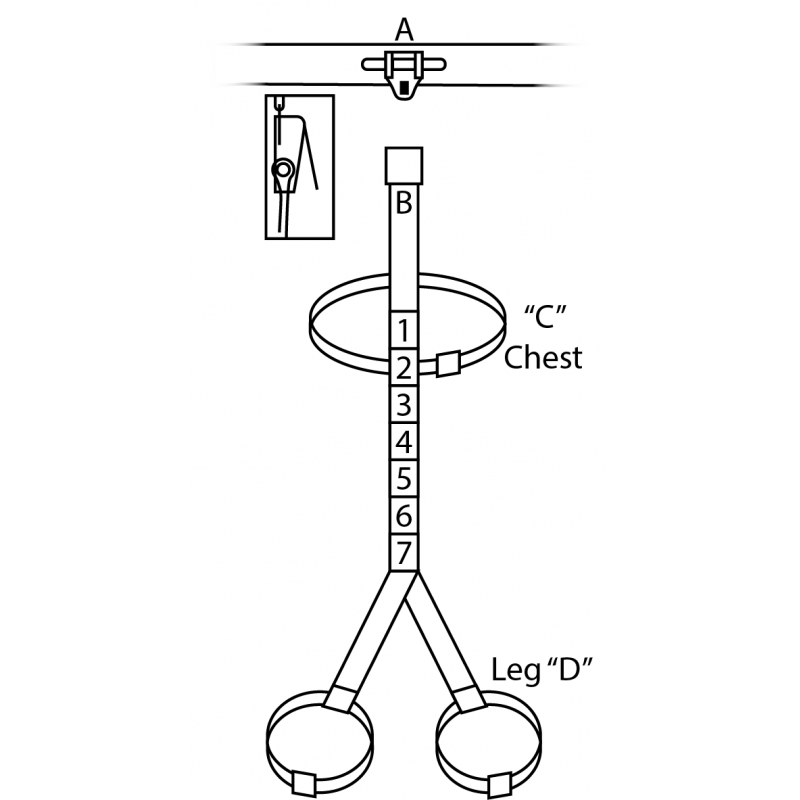 Safety Harness for Rotational Total Body Irradiation (TBI