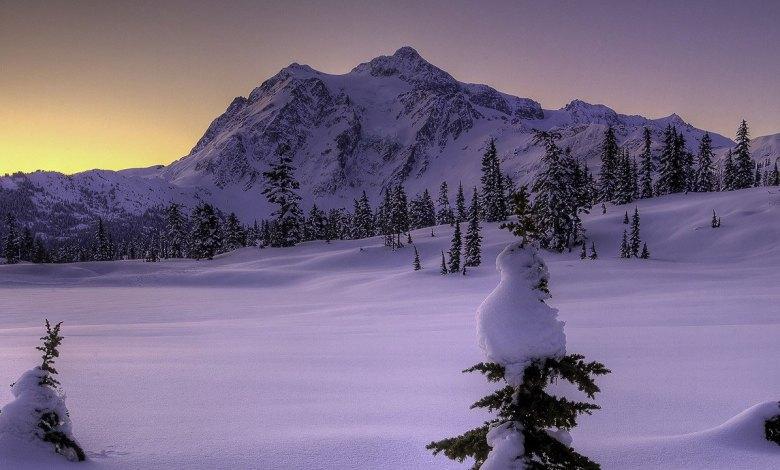 Imagem do podcast 3 da segunda fase de TESTE do RPG Next - Pontas de árvores saindo debaixo da muita neve