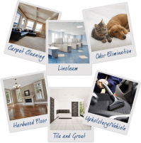 Carpet Cleaning Experts Madison, WI | R&R Carpet Cleaning