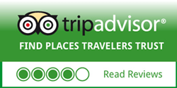 Read Tripadvisor1 Reviews