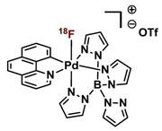 Fluorine Radioisotopes