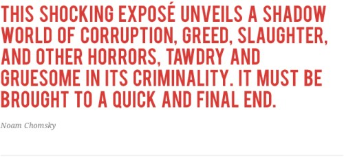 Chomsky-Quote