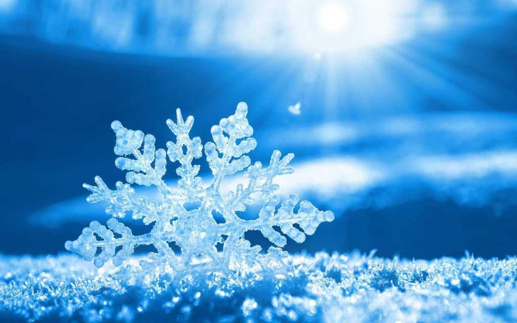 Is dit sneeu of kapok?