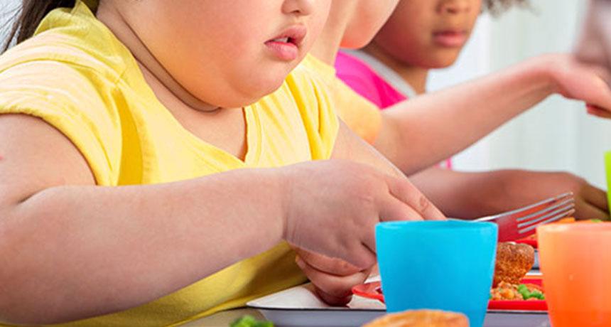 Raad teen obesiteit by kinders