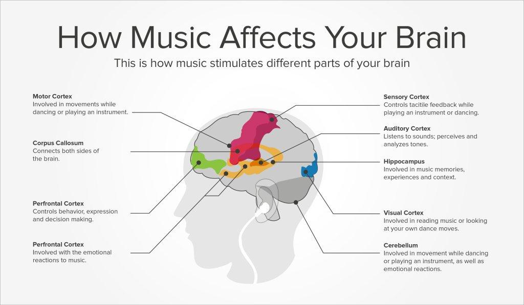 Wat gebeur in die brein as jy musiek luister?