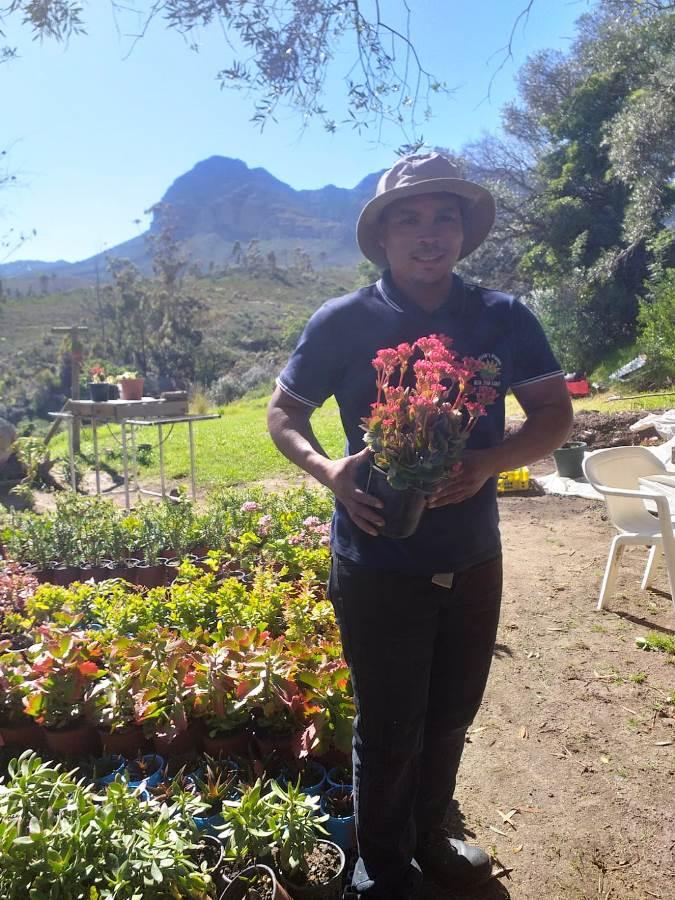 Kelvin se plante floreer