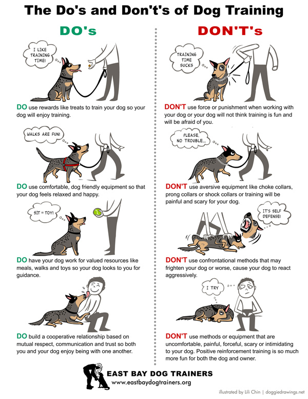 diagram of outside ear mobility scooter wiring lead by example - rspca south australia