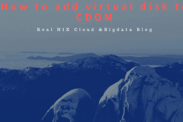 How to add virtual disk to CDOM