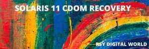 Solaris 11 LDOM Recovery