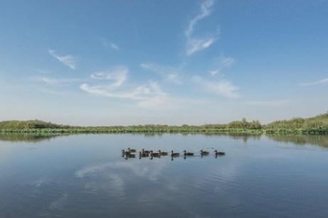 Laguna del porticciolo di Grazie
