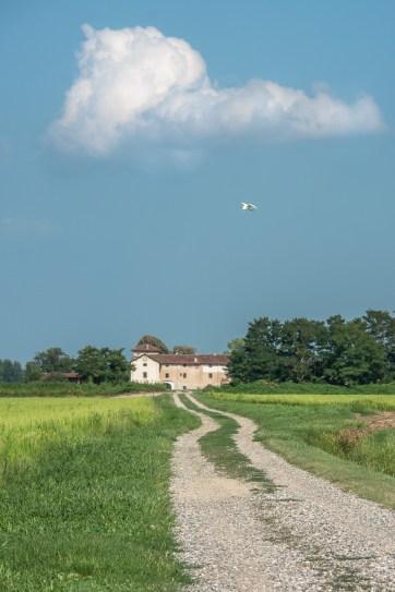 Cascina Caccia vista dal Fiume Agogna, confine naturale tra Piemonte e Lombardia. Borgolavezzaro