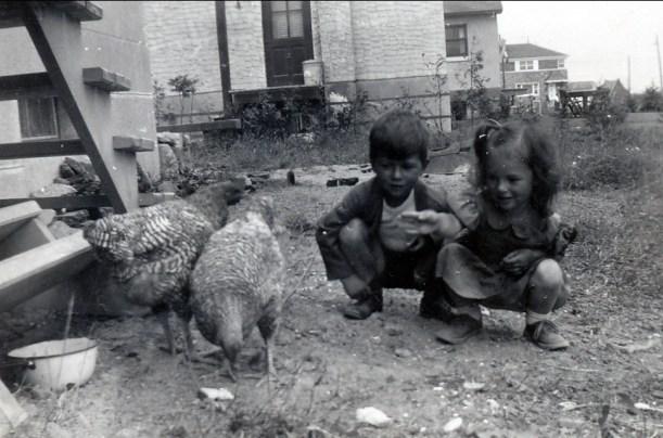 1947, Marc et Irène - poules à Cité Jardins