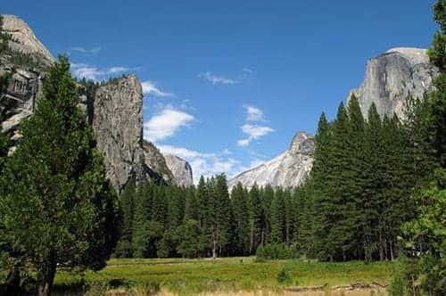Hantavirus Hits California Parks Guide | RT