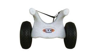 chariot-rollin