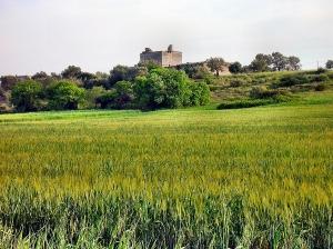 Coni visuali pittoreschi da tutelare, Serra  tra Galatina e Collemeto, Masseria fortificate