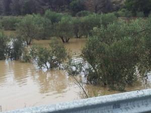alluvione 2013 c