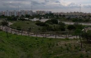Parco del Mirto