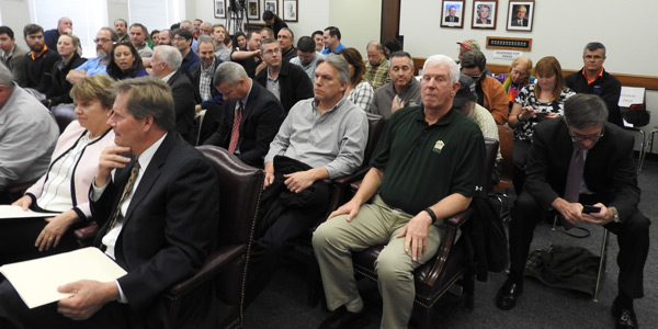 new york public service commission hearing attendees, fitzpatrick