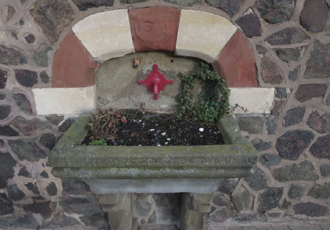 Horse Drinking Trough
