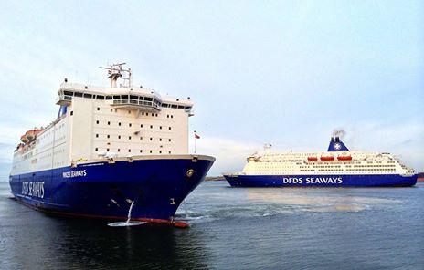 DFDS Ferry's samen in haven IJmuiden