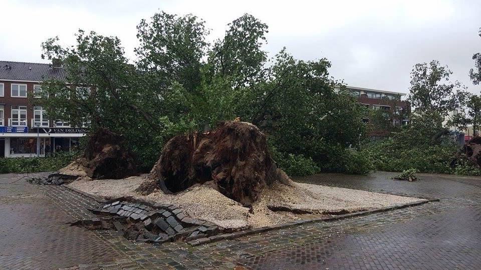 Flinke overlast zomerstorm in Velsen