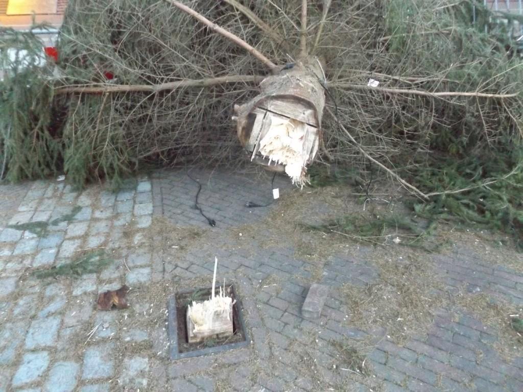 Omgevallen Kerstboom