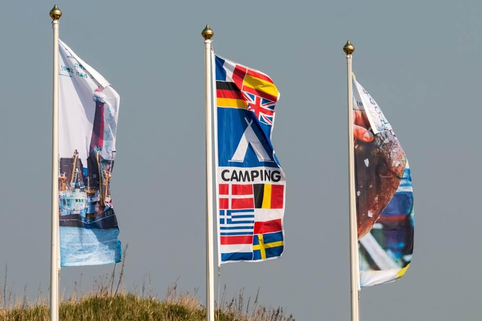 Milieuvriendelijkheid in duinen IJmuiden