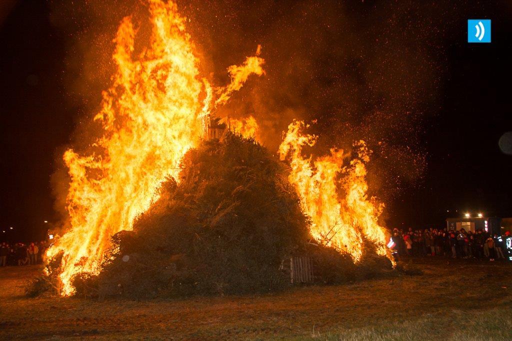 kerstbomen-verbranding-santpoort-4