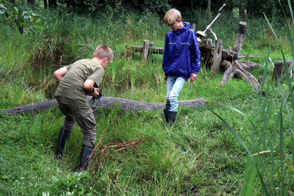 00009 2017 Huttenbouw Velserbroek